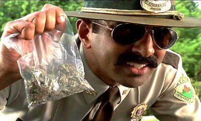 policja marihuana konopie