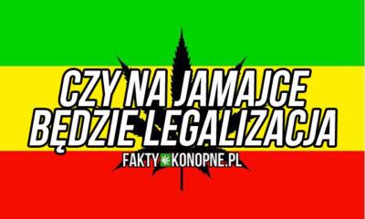 jamajka legalizacja marihuany