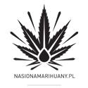 nasionamrihuany.pl
