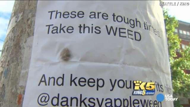 darmowa marihuana weed fairy seattle rozdaje ziołowa wróżka