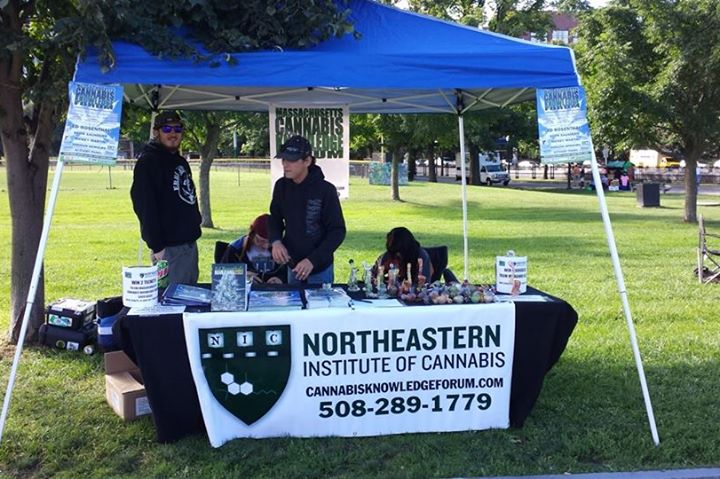 institute-cannabis-marihuana-nauka-szkoła
