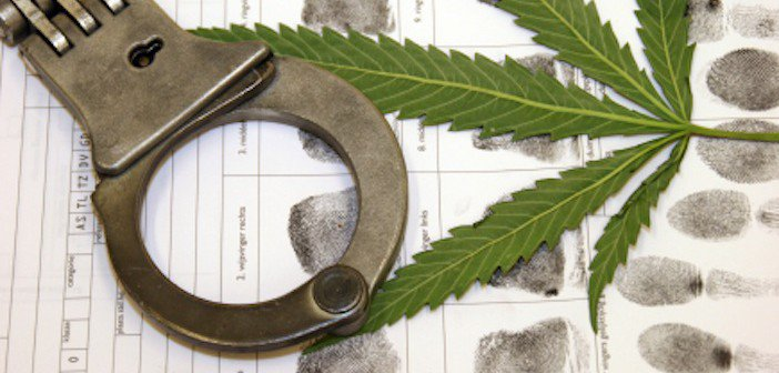 marihuana-ameryka-aresztowania