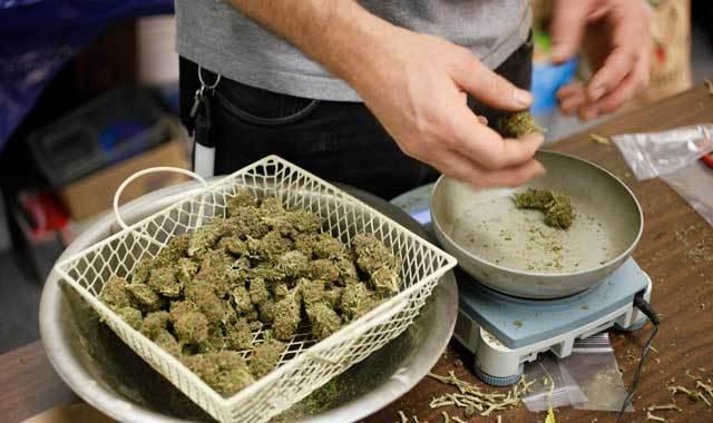 waszyngton-marihuana-legalizacja-konopie-ceny-fakty
