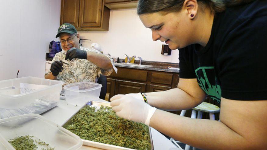 waszyngton marihuana legalizacja10