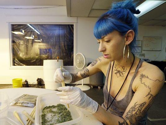waszyngton marihuana legalizacja5