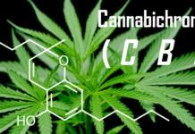 cbc-kannabichromen-zalety
