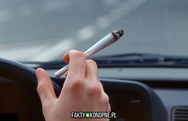 marihuana-samochod-kierowcy-auto-kolorado-jazda-palenie