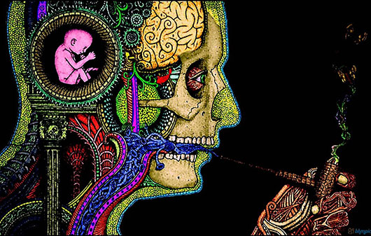 psychodeliki-lsd-grzyby-medyczna-marihuana