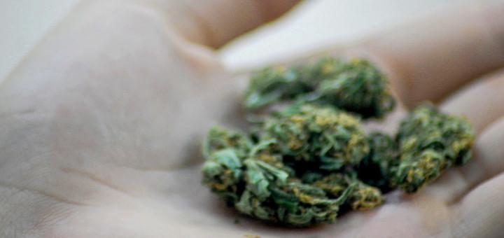 marihuana-medyczna-vs-rekreacyjna