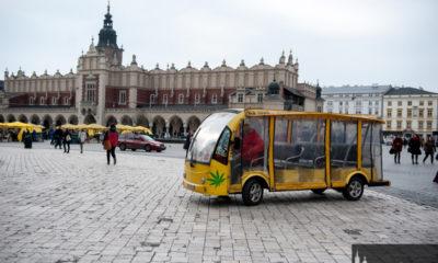 marihuana-meleks-krakow-kierowca