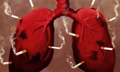marihuana-rak-papierosy