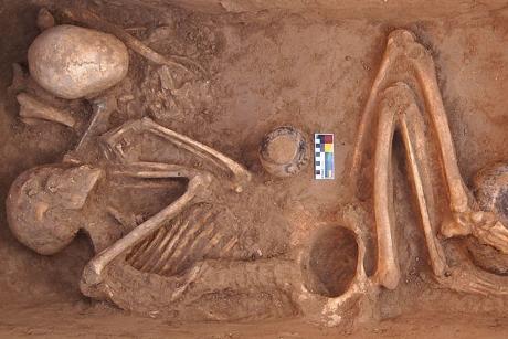 najstarsza-znaleziona-marihuana-prehistoryczna