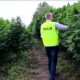 plantacja-marihuany-torun