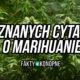 cytaty-marihuana