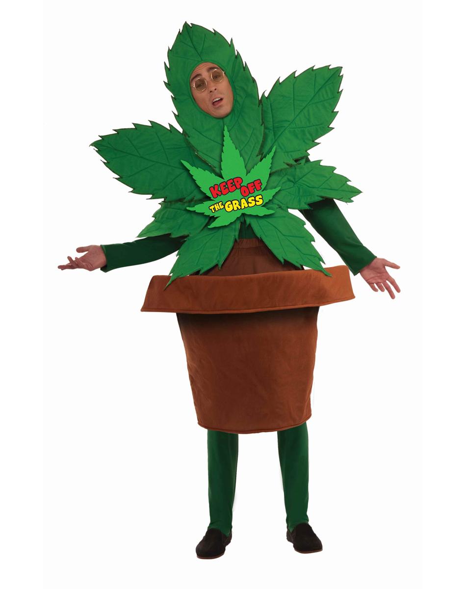 marihuana-doniczka