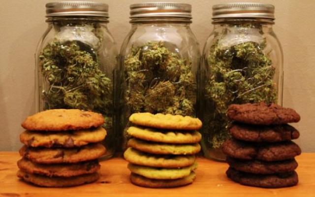 marihuana-gastro-faza-węch-zapach-apetyt