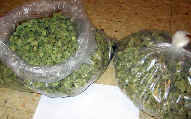 torba-marihuany
