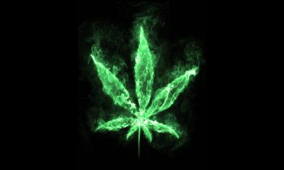 bierne-palenie-marihuany