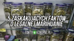 5 zaskakujących faktów o legalnej marihuanie