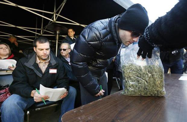 gielda-aukcja-marihuana