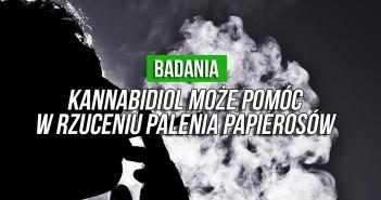 kannabidiol-cbd-papierosy-nikotyna