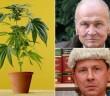sedzia-uniewinnil-za-medyczna-marihuane