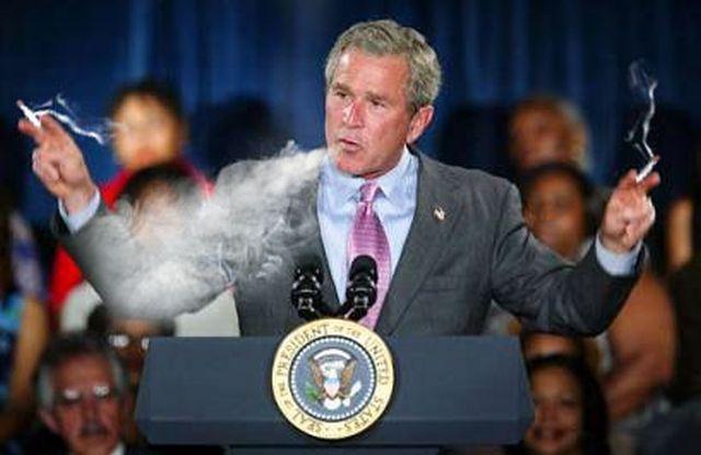 bush-pali-marihuane