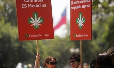 chile-mama-marihuana