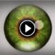 filmik-na-halucynacje