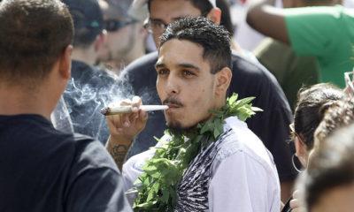 kolorado-marihuana