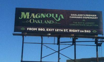 marihuana-Billboard
