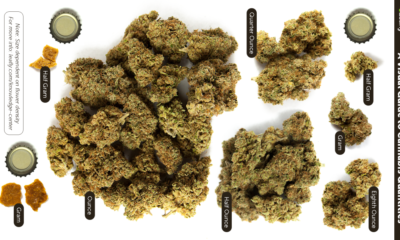 jak-wyglada-gram-marihuany-5