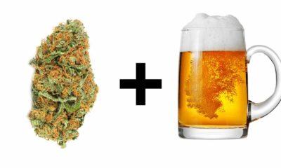 alkohol-i-marihuana-thc-razem
