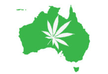 nowy-gatunek-marihuany-australia