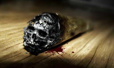 Codzienne rzeczy, które prędzej Cię zabiją niż marihuana