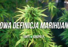 nowa-definicja-marihuany