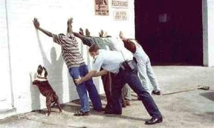 8 najczęstszych powodów zatrzymań przez policję
