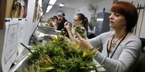 Waszyngton: Ponad 6000 pracowników w branży legalnej marihuany