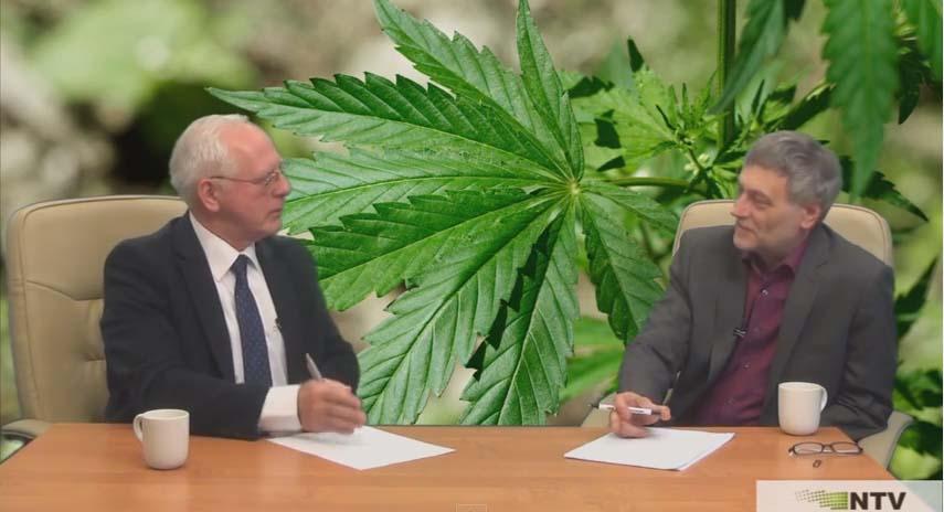 Doktor Jerzy Zięba opowiada o medycznej marihuanie i oleju RSO