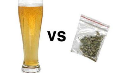 10 powodow dlaczego marihuana jest lespa od alkoholu