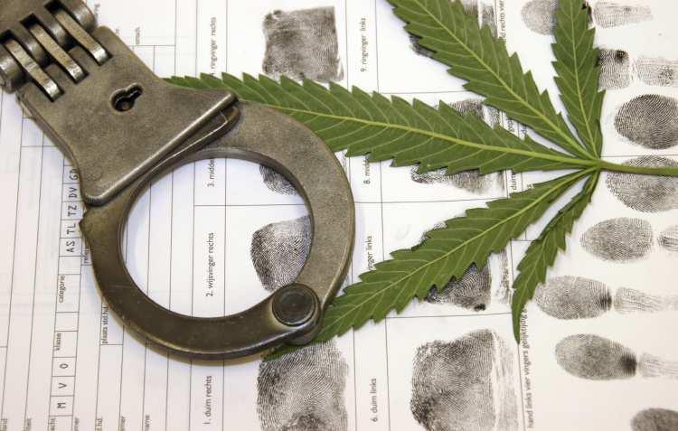 Więzienia są przepełnione przez marihuanę