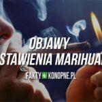 Objawy odstawienia marihuany: Czego można się spodziewać?