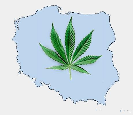 Marihuana w Polsce