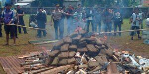 Indonezja – publiczne spalanie 3 ton marihuany