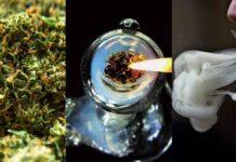 rzeczy-do-zrobienia-przed-smiercia-dla-palaczy-marihuany