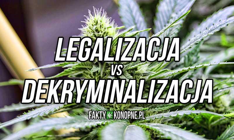 różnice pomiędzy legalizacją marihuany a dekryminalizacją