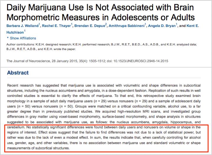 marihuana-nie-powoduje-zmian-w-mozgu