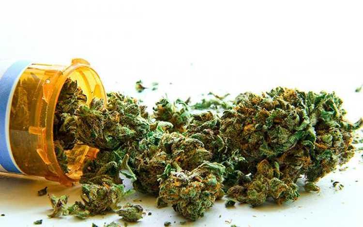 Medyczna marihuana zabija komórki rakowe