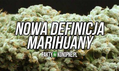 Nowa ustawa: Nowa definicja marihuany i ziela konopi