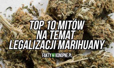 top-10-mitow-na-temat-legalizacji-marihuany